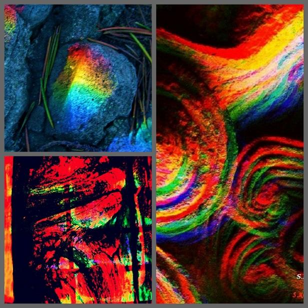 Collage_.jpg
